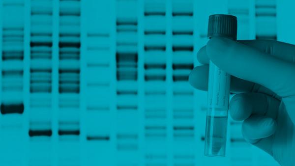 Cómo Descargar tu ADN de FamilyTreeDNA y Ancestry