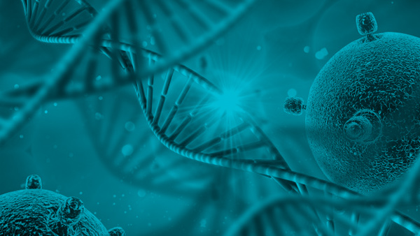 La Ciencia Detrás de los Resultados de ADN