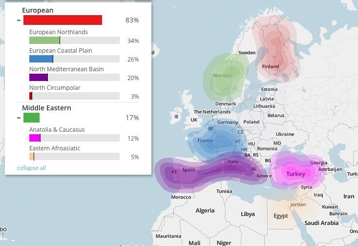 Un ejemplo de resultados de ADN autosomático