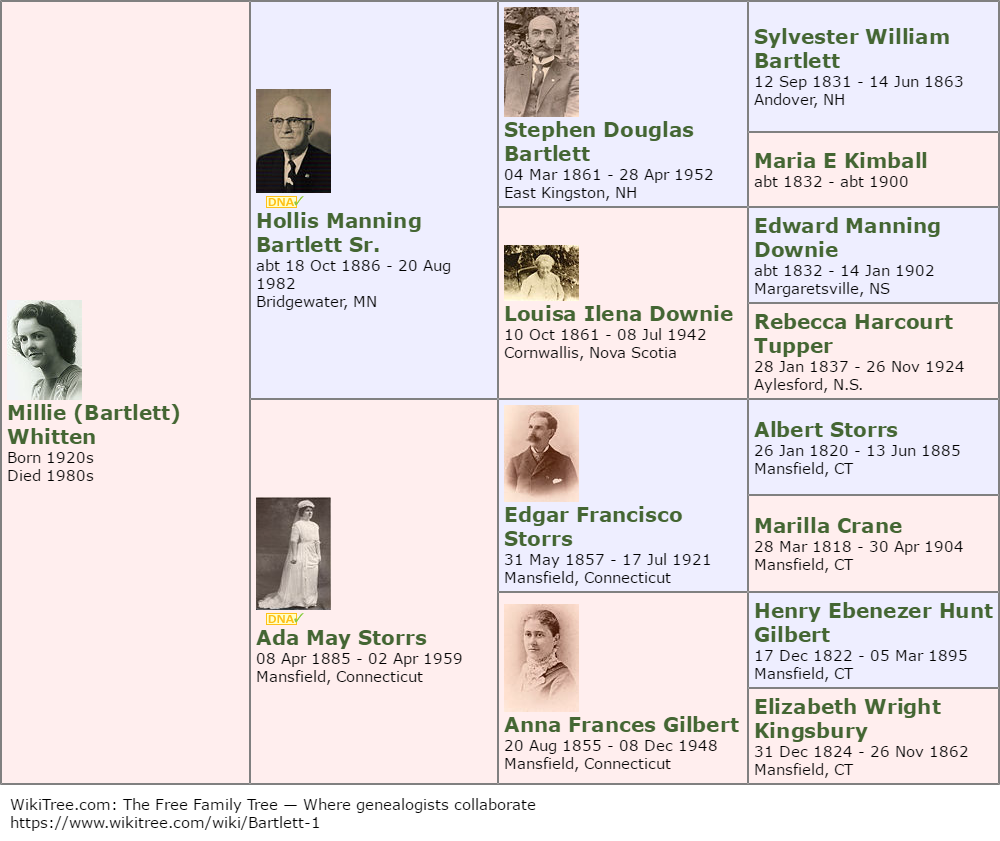 Un ejemplo de árbol familiar creado con Wiki Tree