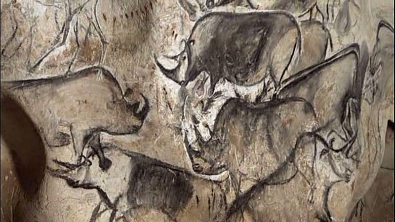 Rinocerontes en la caverna de Chauvet (32.000 años)