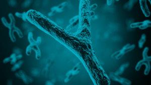 Guía de Tests de ADN para Línea Paterna: Cromosoma Y